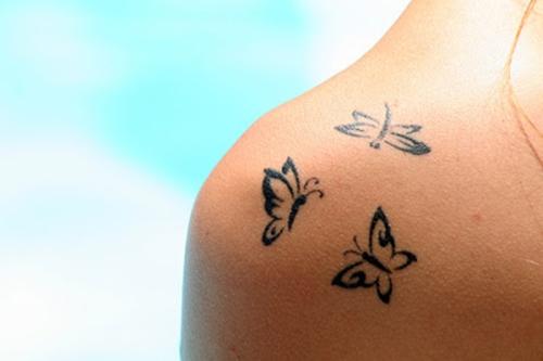 borboletas3